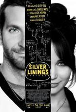 Silver Linings Playbook (2012) 8